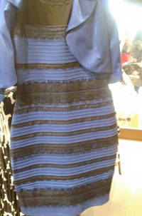 Arguing Over a Dress Color Finally Drove Twitter Insane